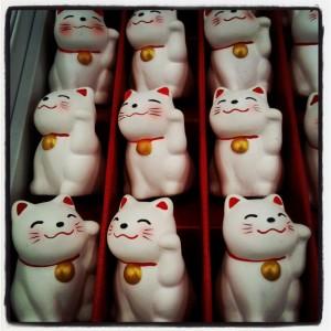 Japanese culture - Meneki Neko